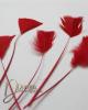 Dekorációs toll  / Piros