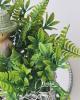 Kiegészítő növényköteg
