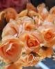 10 db.-os virágfej / 4 cm.-Antik Lazacnarancs
