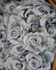 Rózsa / Világoskék